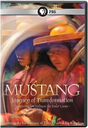 Poster of Mustang: Journey of Transformation